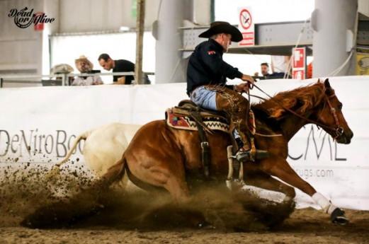 33° Salone del Cavallo Americano