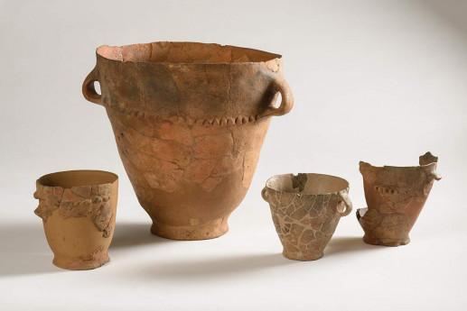 Attività museali del Museo Archeologico Platina