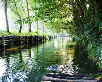 Visita guidata nel Parco dei fontanili di Capralba